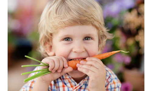10 Tips on Nutrition Education